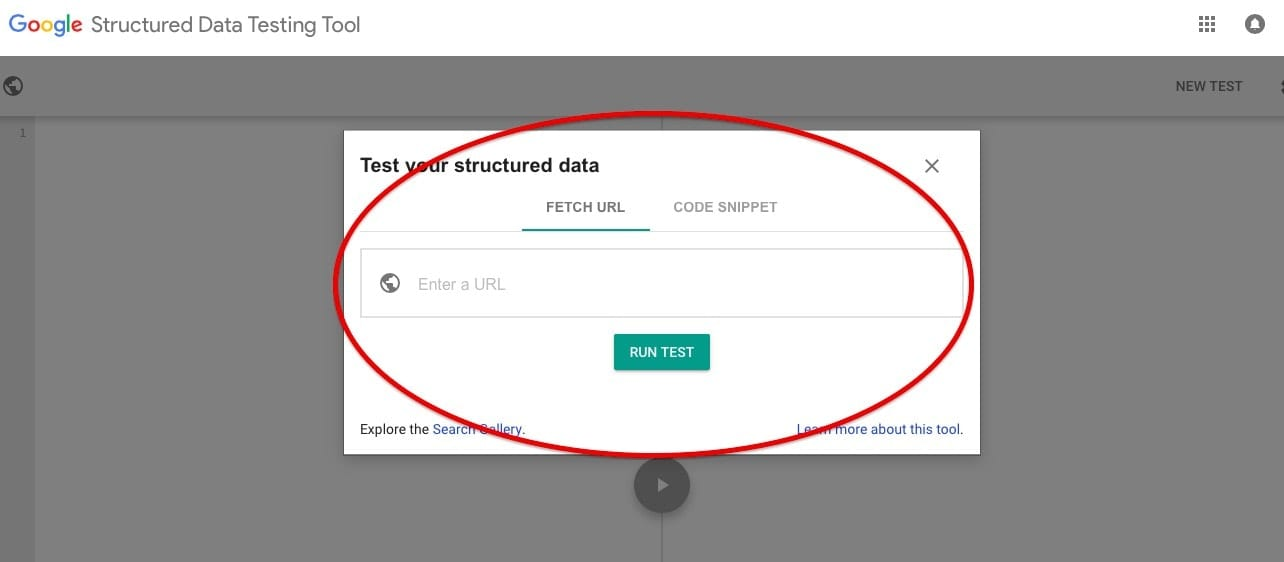Google Structured Data Checker